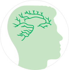 МРТ головного мозга и артерий