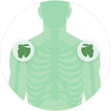 МРТ суставов Плечевой сустав с одной стороны