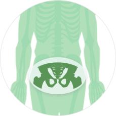МРТ суставов - два тазобедренных сустава